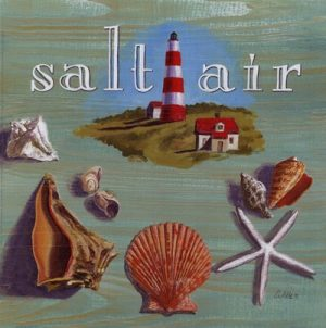 The Saltair Song by Terry Boyle