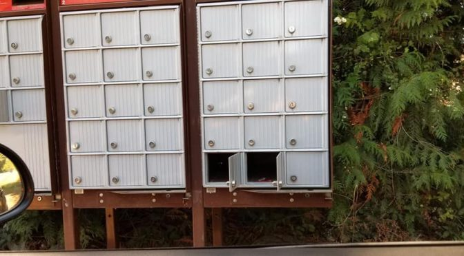 Saltair Mail Box Break-Ins
