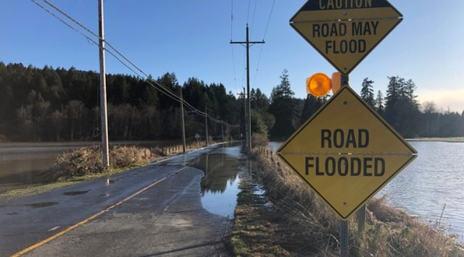 Conditions across Cowichan region improve overnight, state of local emergency remains in EFFECT