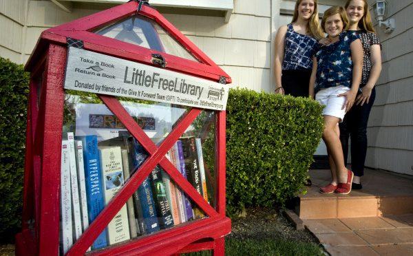 Mini Libraries A Community Project
